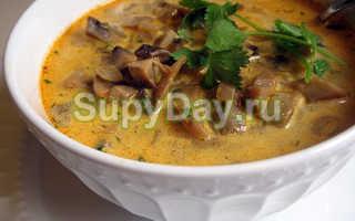 Суп-лапша с белыми грибами: рецепты приготовления со свежими и замороженными грибами