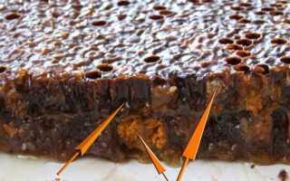 Перга пчелиная: как достать и отделить от сот, сбор за сезон с одного улья
