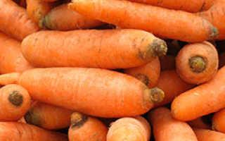 Морковь сорта Витаминная: ботаническое описание и характеристика, плюсы и минусы, выращивание и уход, фото, отзывы