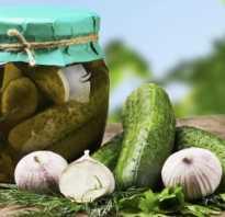 Маринованные огурцы: польза и вред для организма, пищевая ценность и состав, рецепт