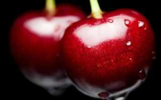 На какой год плодоносит черешня: сезон плодоношения, когда черешня вступает в период плодоношения, лучшие сорта, характеристики, районирование