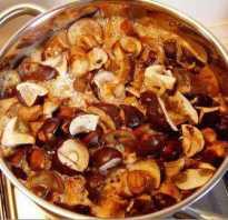 Нужно ли варить белые грибы перед жаркой, как правильно отварить