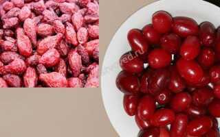 Как отличить сушёный кизил от сушёных помидоров черри и других подделок, фото в разрезе