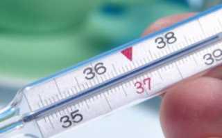 Температура тела у коровы (КРС): какая в норме, как измерить и сбить