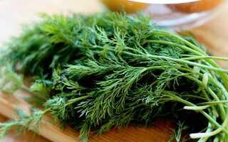 Семена укропа для глаз: лечебные свойства, как сделать примочки, длительность применения