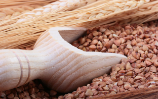 Чем полезна гречка для организма мужчин: польза, влияние на потенцию, возможный вред для здоровья