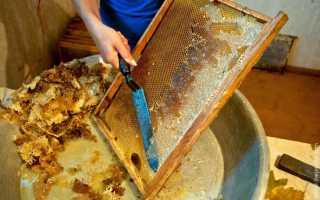 Что такое пасека: определение, сколько меда можно получить, фото, видео