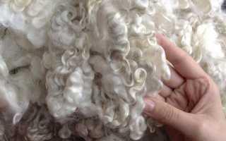 Как эффективно отмыть овечью шерсть в домашних условиях: способы и методы — их преимущества и недостатки фото, видео