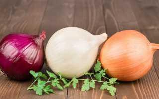 Почему хочется есть репчатый лук: основные причины, чего не хватает в организме