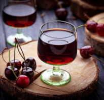 Как сделать вишнёвую настойку на коньяке в домашних условиях, сколько градусов должен иметь напиток