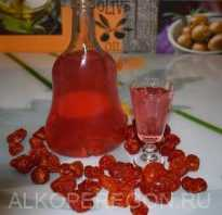 Настойка кизиловая на водке, спирту и их смеси: самые вкусные рецепты приготовления с фото
