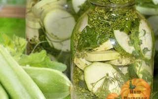 Малосольные кабачки на зиму: лучшие рецепты приготовления, полезные советы