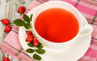 Чай из сушёного шиповника: полезные свойства и противопоказания для организма человека, как правильно заваривать